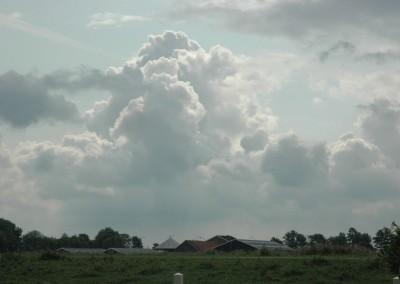 polder bij Nes aan de Amstel
